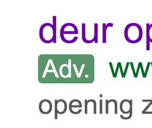 Google adwords Slotenmakers in Den Haag en omstreken